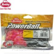 Berklet Firetail Worms